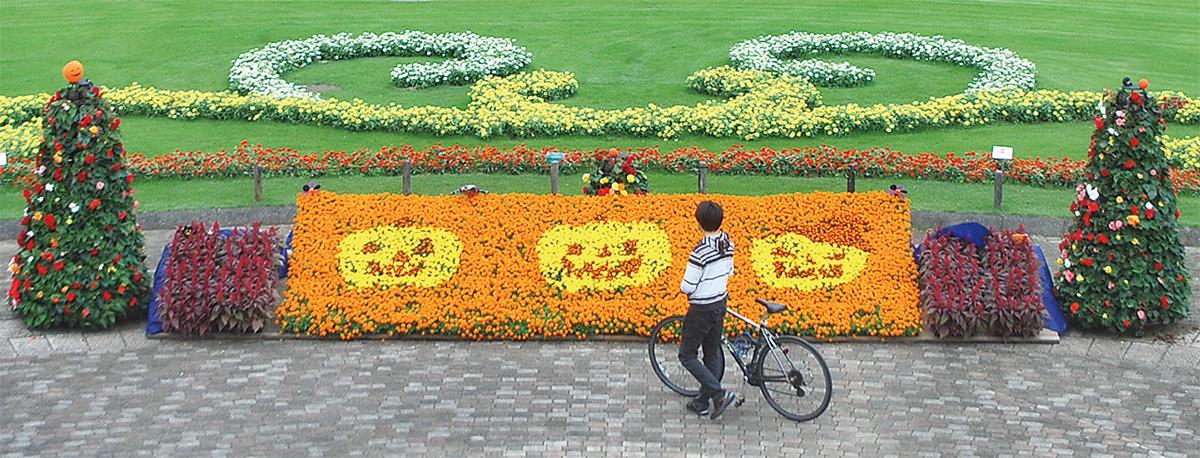花々で彩るハロウィーン