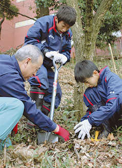 芽生えを掘り起しポットへ移す。右から安達さん、田村さん、中島総務課長=17日