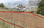 設置場所(赤線内)の山梨県の畑。面積は約200坪