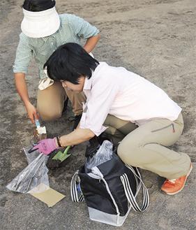 グラウンドの土を採取する調査参加者