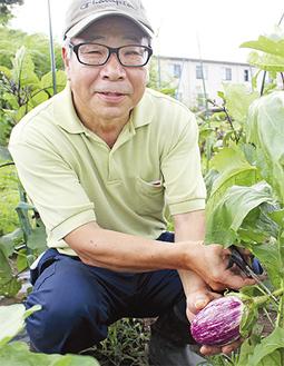 新戸の畑で野菜を収穫する北原さん=17日
