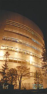 ウェルネスの点灯は13日(月)まで。各日午後5時〜8時。