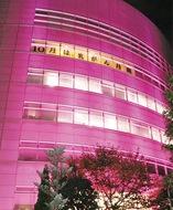 ピンク色で乳がん啓発