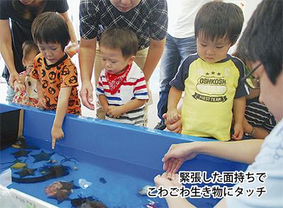 短大に移動水族館