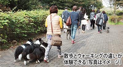 「犬と散歩」で健康づくり