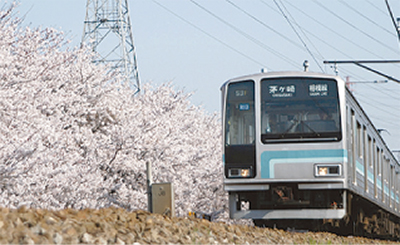 市内桜マップ