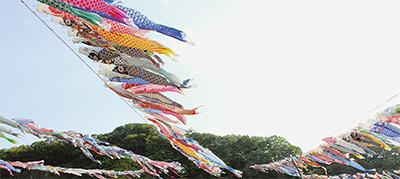 大空を群泳 29日から相模川高田橋で