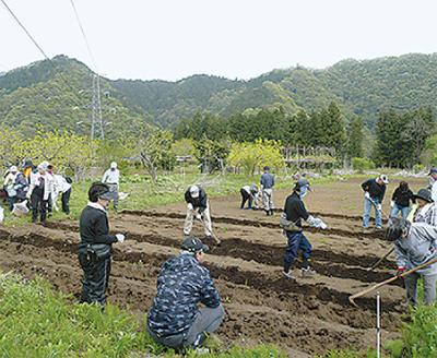 大豆種まき、枝豆収穫を体験