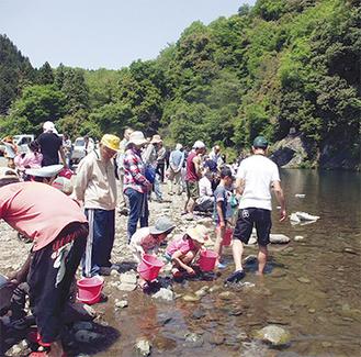 元気な鮎の遡上を願い道志川に放流した