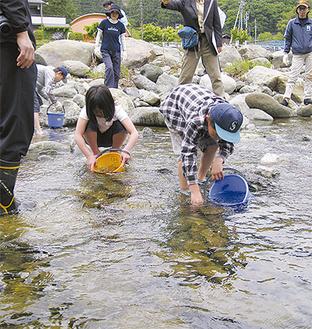 青根地域一体で道志川の環境整備を進めている