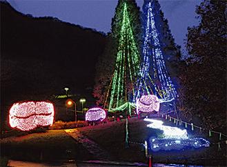冬の名物となった城山公園のライトアップ