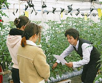 水耕栽培の方法が習える