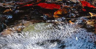 水をテーマにした写真が展示される