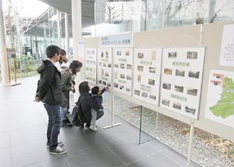 開催されている博物館での巡回展