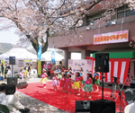 津久井湖観光センター周辺の「花の苑地」