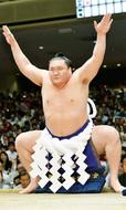 相模原で19年ぶり大相撲