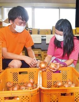 地元野菜を選ぶ大学生