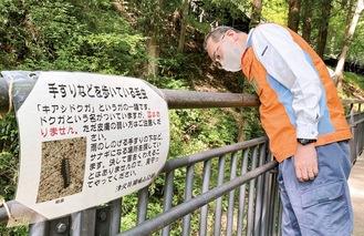 毛虫への注意を促すポスターと手すりにつく毛虫の数を確認する職員=5月6日撮影