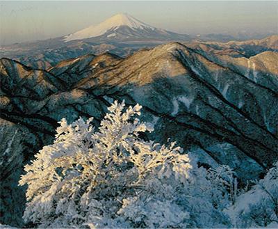 北丹沢の四季を堪能