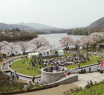 満開の桜を楽しもう