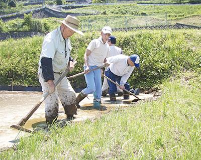 遊休農地に新規就農者