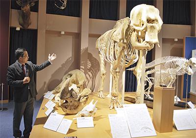 「いのちの博物館」開設