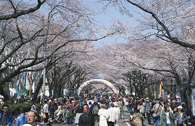 春の祭典  今年も盛大に