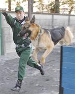 犬と人、言葉いらぬ信頼関係