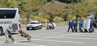 銃を乱射するテロリストに向かっていく警備犬=中央第二駐車場
