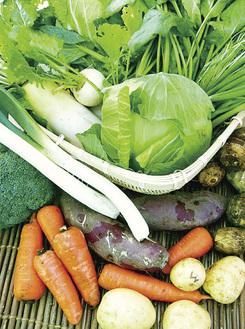季節の新鮮な無農薬野菜がお得に