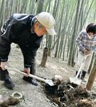 タケノコを掘るメンバー