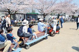 満開の桜に囲まれた会場の中を走るトロッコ列車