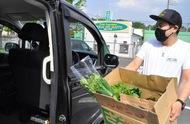 ドライブスルーで野菜販売