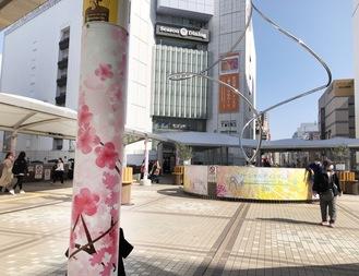 テント支柱に巻かれた桜模様のシート