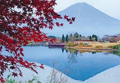 雄大な富士山展