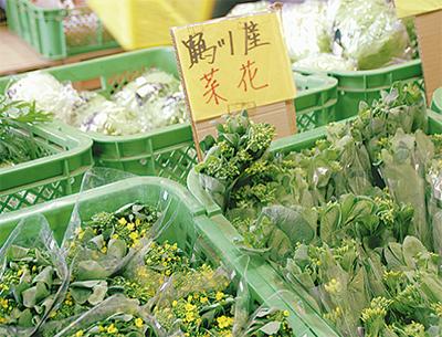春野菜と苗市