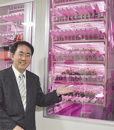 LEDで夢の野菜栽培