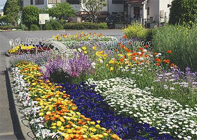 地域で作る花と緑のまち