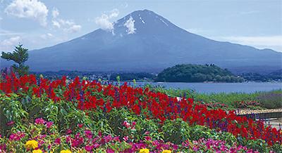 初めてでも安心世界遺産の富士登山