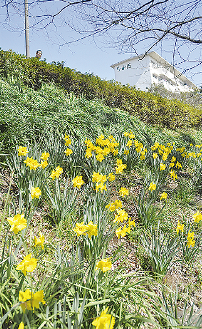 花で美化、健康管理にも一役