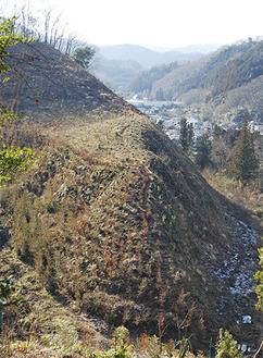 スギの木が伐採・植え替えされた、下恩方町にある清水さんの山