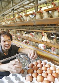 手で卵を集める数馬さん
