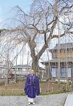 しだれ桜の前に立つ佐藤住職(3月17日撮影)