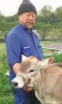 小比企の牧場でのびのびと育つ牛