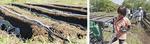 農場に設置されたパイプから自動的に水と液肥が供給される(左)、パイプは手前緑色の液肥混入器と接続されている(右)