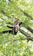 樹上で遊んだよ