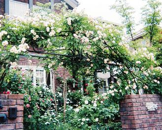 バラとレンガの組み合わせが「一枚の絵」となっている穂坂邸