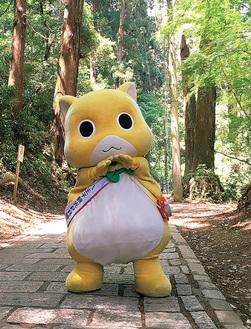 (ムッちゃんなので)6月6日生まれ。いつの間にかお山(高尾山)にいたそう。イベントに登場したり、登山客を出迎えたりしている。好物は枝豆。八王子観光PR特使