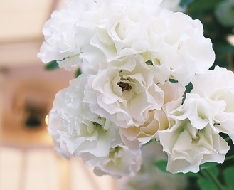 チャペルと「重なる」白バラ=5月29日撮影=