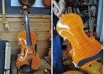 「お気に入り」という1枚裏板(ワンピース)のバイオリン。5、6年ほど前に手掛けた